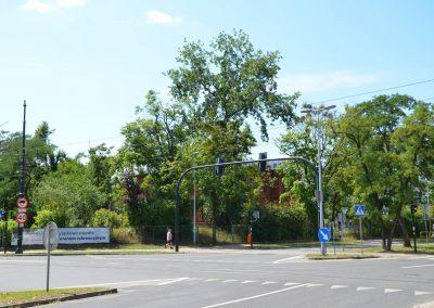 Skrzyżowanie Sienkiewicza z Fałata z widokiem w kierunku Kasyna